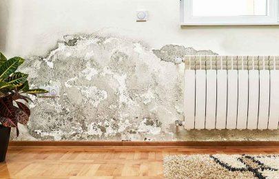 معالجة الرطوبة في الحوائط | 0502554598