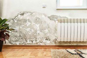 كشف الرطوبة في الجدران