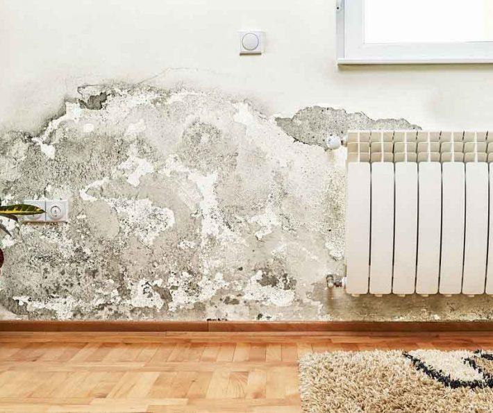 كشف الرطوبة في الجدران   0502554598